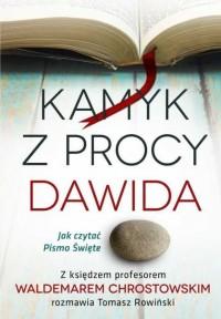 Kamyk z procy Dawida Jak czytać Pismo Święte (W.Chrostowski T.Rowiński)