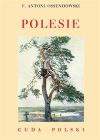 Polesie Cuda Polski reprint (F.A.Ossendowski)